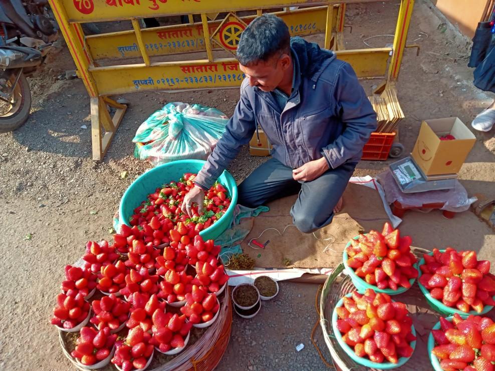 Mahabaleshwar - Where Strawberries Grow
